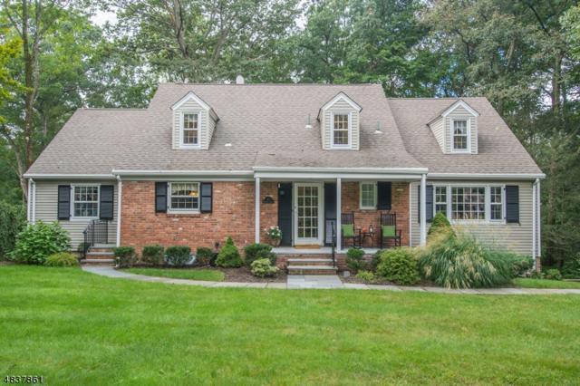10 Orchard Rd, Kinnelon Boro, NJ 07405 (MLS #3502418) :: SR Real Estate Group