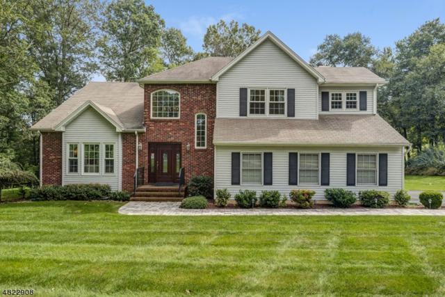 10 Poppy's Pl, Randolph Twp., NJ 07869 (MLS #3502602) :: SR Real Estate Group