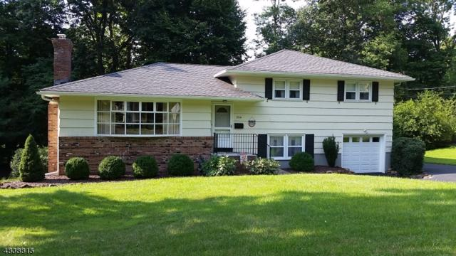 204 Timber Dr, Berkeley Heights Twp., NJ 07922 (MLS #3502829) :: SR Real Estate Group