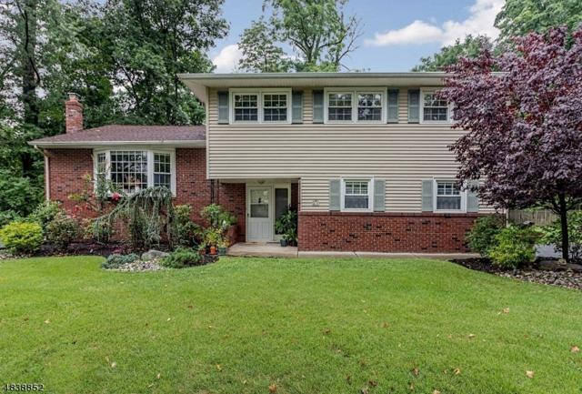 9 Copperfield Rd, Scotch Plains Twp., NJ 07076 (#3502918) :: Daunno Realty Services, LLC