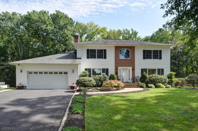 2258 Redwood Rd, Scotch Plains Twp., NJ 07076 (#3503065) :: Daunno Realty Services, LLC