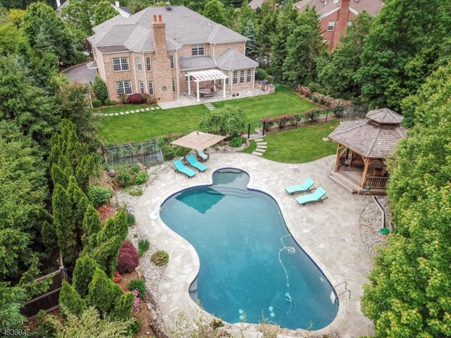 46 Great Hills Ter, Millburn Twp., NJ 07078 (#3503107) :: Group BK
