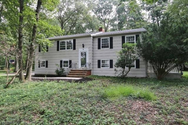 2 Long Ridge Rd, Parsippany-Troy Hills Twp., NJ 07869 (MLS #3503183) :: RE/MAX First Choice Realtors