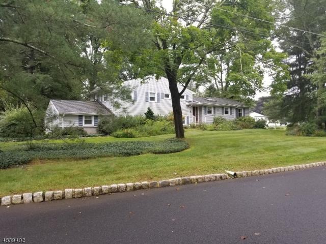 51 Circle Dr, Long Hill Twp., NJ 07946 (MLS #3503444) :: SR Real Estate Group