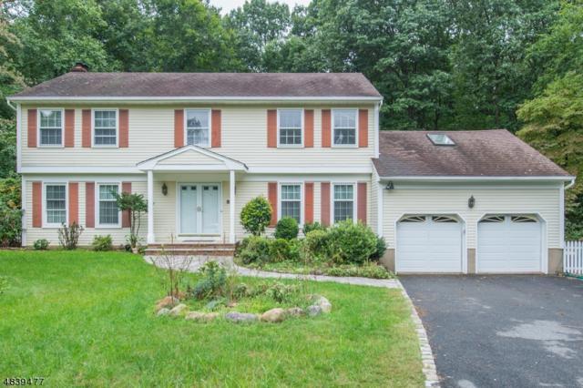 59 Mcnab Ave, Hanover Twp., NJ 07927 (MLS #3503467) :: William Raveis Baer & McIntosh