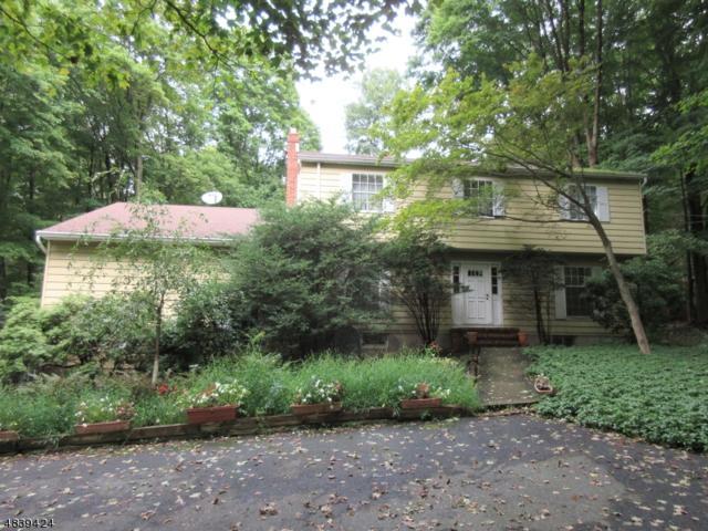 36 Piersons Hill Rd, Randolph Twp., NJ 07869 (MLS #3503502) :: The Sikora Group