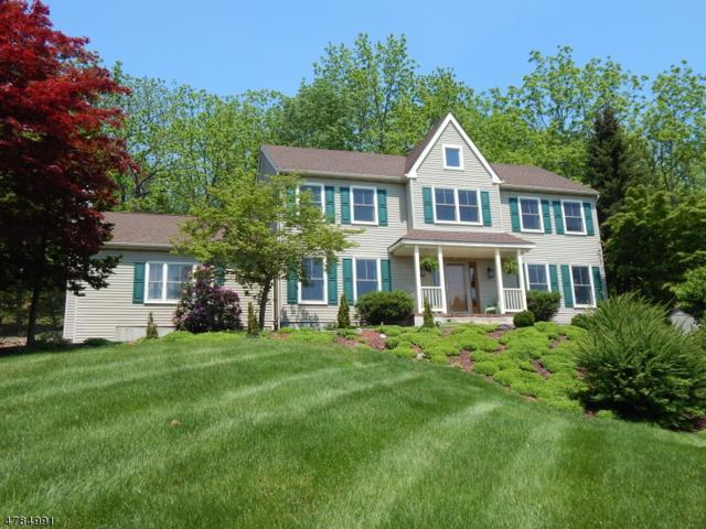 9 Rosewood Ln, Washington Twp., NJ 07882 (MLS #3503549) :: The Sue Adler Team