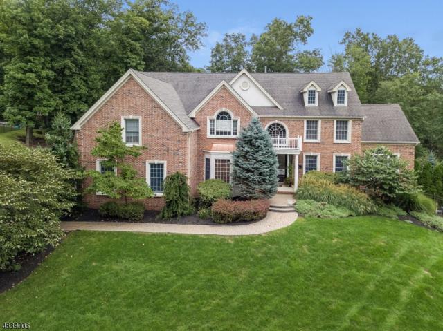 10 Van Nostrand Rise, Bridgewater Twp., NJ 08807 (MLS #3503778) :: Jason Freeby Group at Keller Williams Real Estate