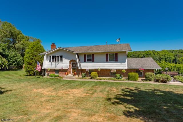 339 Delaware Rd, Hope Twp., NJ 07825 (MLS #3503847) :: Jason Freeby Group at Keller Williams Real Estate