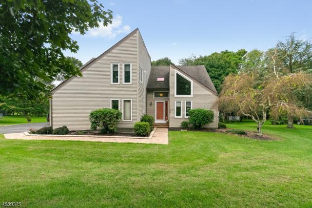 39 Gridley Cir, Holland Twp., NJ 08848 (MLS #3503860) :: Jason Freeby Group at Keller Williams Real Estate