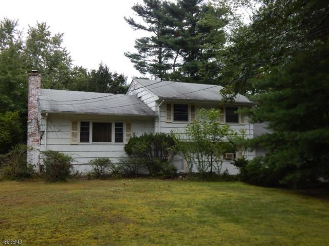60 Magnolia Pl, Wayne Twp., NJ 07470 (MLS #3503921) :: SR Real Estate Group