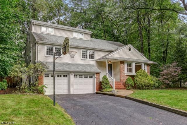 4 Tower Hill Road, Morris Plains Boro, NJ 07950 (MLS #3505073) :: SR Real Estate Group