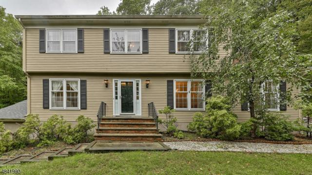 608 Mountain Rd, Kinnelon Boro, NJ 07405 (MLS #3506081) :: SR Real Estate Group