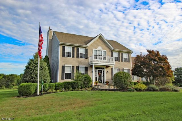 17 Timmons Hill Dr, Millstone Twp., NJ 08535 (MLS #3506338) :: Vendrell Home Selling Team