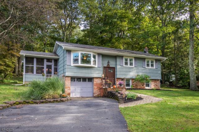 4 Cub Ln, Hardyston Twp., NJ 07460 (MLS #3506494) :: Coldwell Banker Residential Brokerage