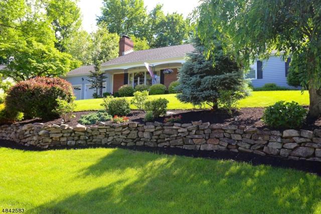 491 Bayberry Ln, Mountainside Boro, NJ 07092 (MLS #3506937) :: The Dekanski Home Selling Team