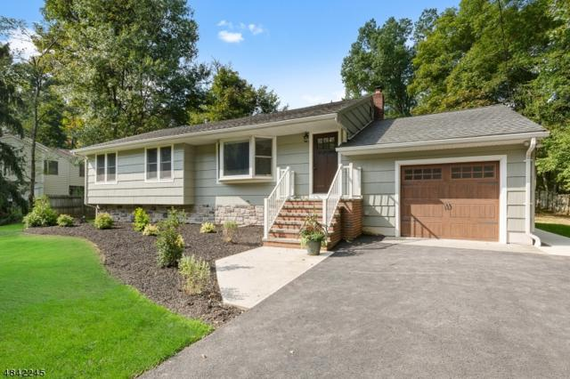 256 Old Forge Rd, Long Hill Twp., NJ 07946 (MLS #3506976) :: The Sue Adler Team