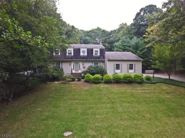 13 Cromwell Dr, Randolph Twp., NJ 07945 (MLS #3507348) :: The Douglas Tucker Real Estate Team LLC
