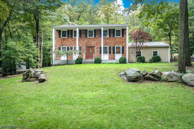 12 Cherry Tree Ln, Kinnelon Boro, NJ 07405 (MLS #3507542) :: The Dekanski Home Selling Team