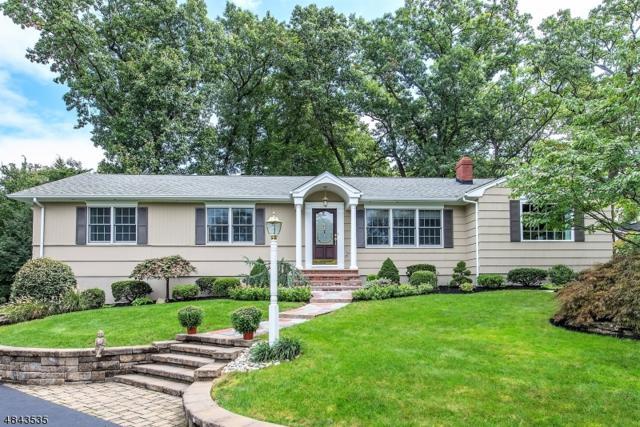 18 Birch Hill Dr, Hanover Twp., NJ 07981 (MLS #3507560) :: SR Real Estate Group