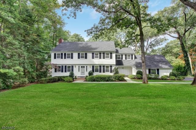 41 Greenbriar Dr, Summit City, NJ 07901 (MLS #3507879) :: The Dekanski Home Selling Team