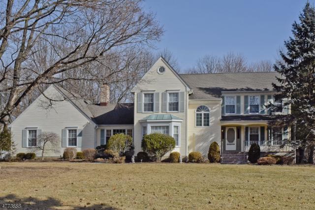 4 Winchester Terrace, Randolph Twp., NJ 07869 (MLS #3507880) :: The Douglas Tucker Real Estate Team LLC