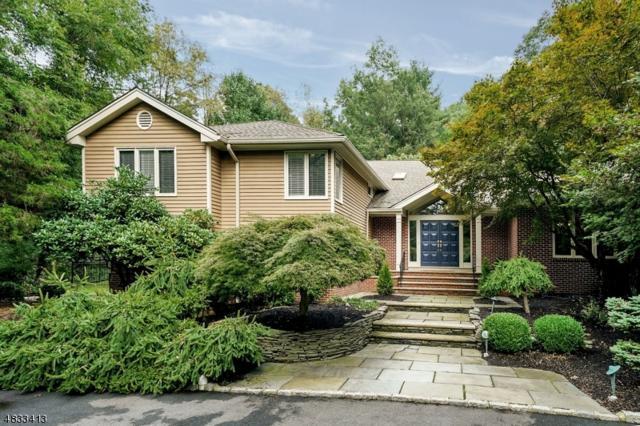 1 Cedar Ridge Dr, Chester Twp., NJ 07930 (MLS #3508073) :: William Raveis Baer & McIntosh
