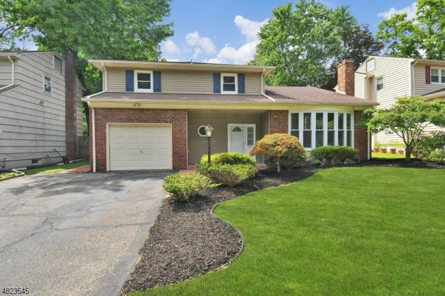 20 Elmwood Rd, Springfield Twp., NJ 07081 (MLS #3508577) :: The Dekanski Home Selling Team
