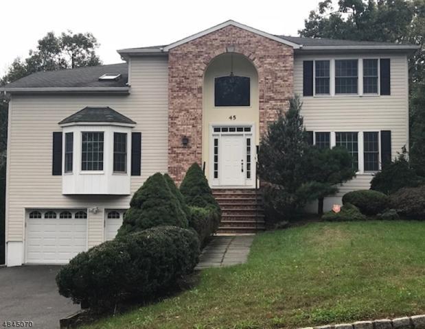 45 Lessing Rd, West Orange Twp., NJ 07052 (MLS #3508719) :: William Raveis Baer & McIntosh