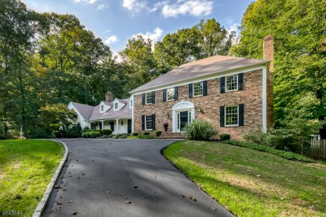 6 Indian Hollow Rd, Mendham Twp., NJ 07945 (MLS #3508792) :: SR Real Estate Group