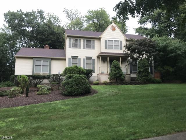 7 Hawser Way, Randolph Twp., NJ 07869 (MLS #3508928) :: The Douglas Tucker Real Estate Team LLC
