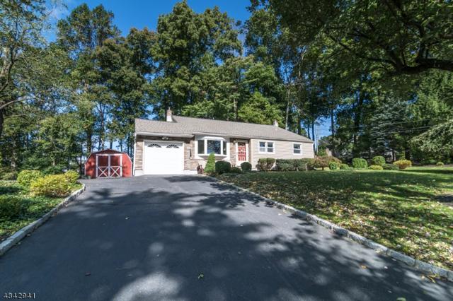 13 Lenape Way, Randolph Twp., NJ 07869 (MLS #3509090) :: The Douglas Tucker Real Estate Team LLC