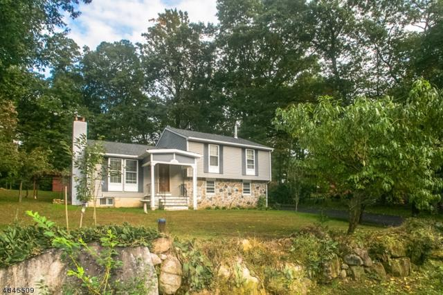 67 Leo Ave, Hopatcong Boro, NJ 07843 (MLS #3509112) :: Team Francesco/Christie's International Real Estate