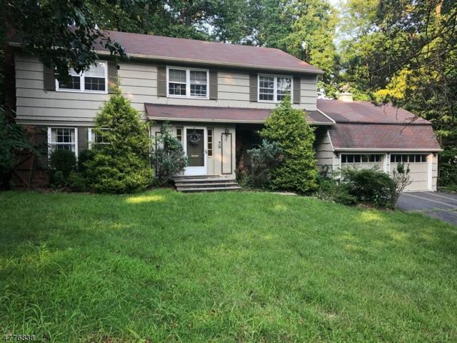 4 Clearview Rd, Springfield Twp., NJ 07081 (MLS #3509186) :: The Dekanski Home Selling Team