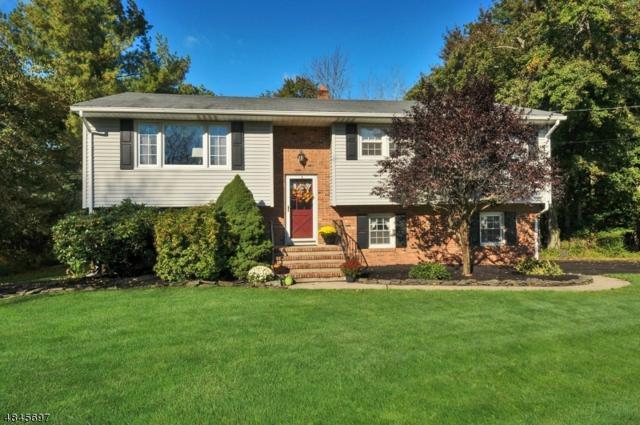 515 Somerville Rd, Bridgewater Twp., NJ 08807 (MLS #3509375) :: SR Real Estate Group