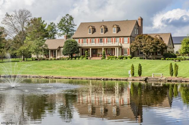 36 Meadow Lark Ln, Montgomery Twp., NJ 08502 (MLS #3509515) :: SR Real Estate Group