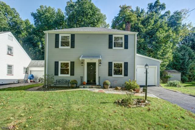 243 Forest Dr, Union Twp., NJ 07083 (MLS #3509618) :: The Dekanski Home Selling Team
