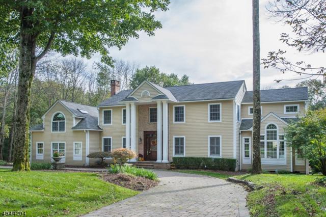 6 Brendan Dr, Mount Olive Twp., NJ 07836 (MLS #3509640) :: SR Real Estate Group