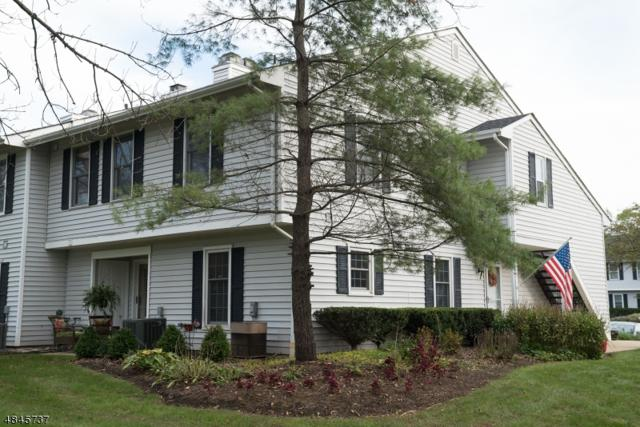 113 Huckleberry Court, Readington Twp., NJ 08887 (MLS #3509646) :: The Sue Adler Team