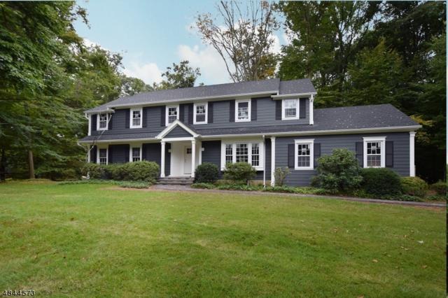 17 Black Birch Rd, Scotch Plains Twp., NJ 07076 (MLS #3509667) :: The Dekanski Home Selling Team