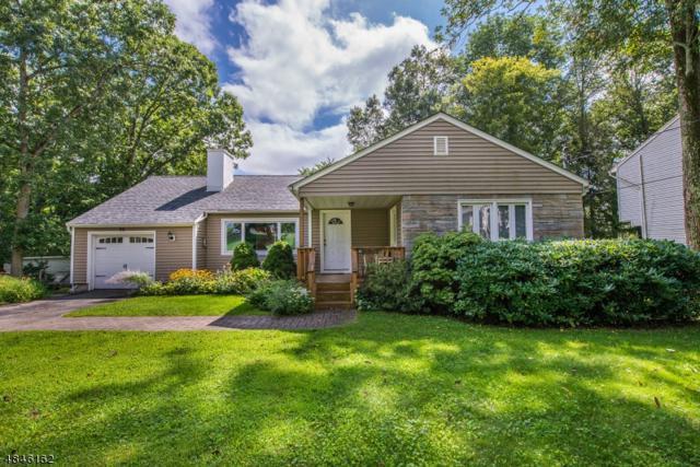 96 W Shawnee Trl, Jefferson Twp., NJ 07849 (MLS #3509712) :: SR Real Estate Group