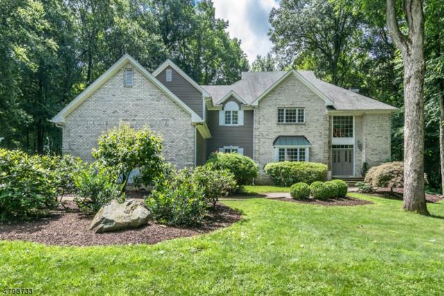 3 Canterbury Ct, Randolph Twp., NJ 07945 (MLS #3509715) :: SR Real Estate Group