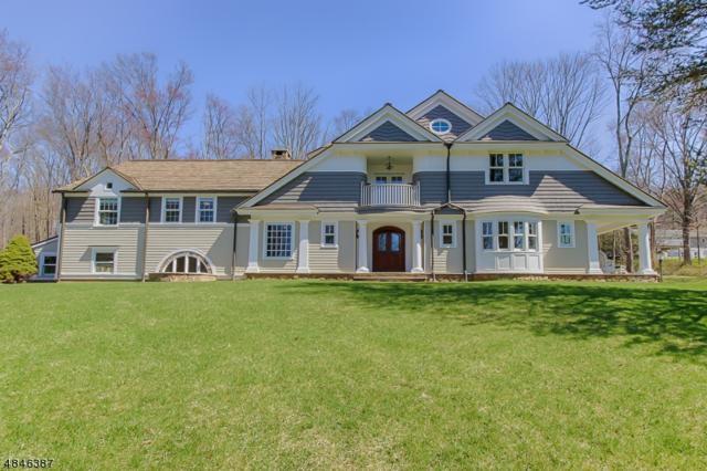 14 Doe Hill Rd, Morris Twp., NJ 07960 (MLS #3510014) :: William Raveis Baer & McIntosh