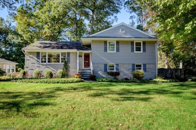 198 Pittsford Way, New Providence Boro, NJ 07974 (MLS #3510079) :: Coldwell Banker Residential Brokerage