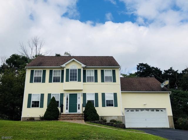 5 Stratford Ln, Newton Town, NJ 07860 (MLS #3510127) :: The Dekanski Home Selling Team