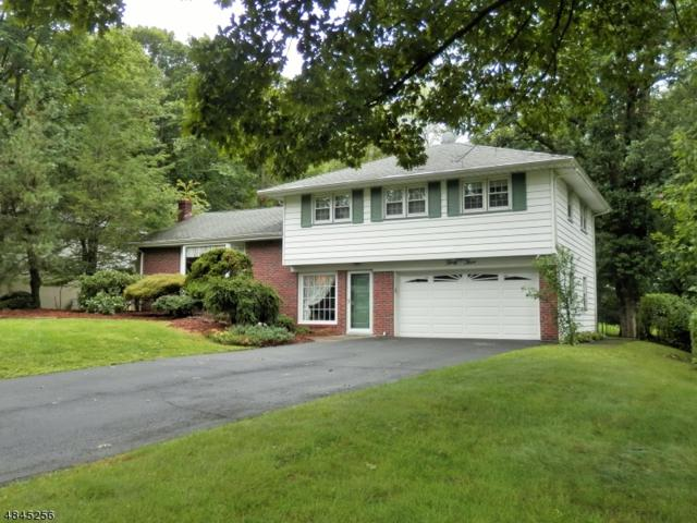 33 Douglas Dr, Montville Twp., NJ 07082 (MLS #3510130) :: William Raveis Baer & McIntosh