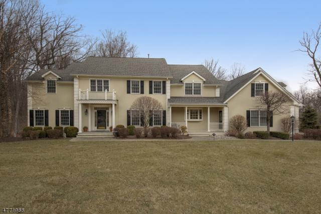 5 Rockwell Ct, Mendham Twp., NJ 07945 (MLS #3510407) :: William Raveis Baer & McIntosh