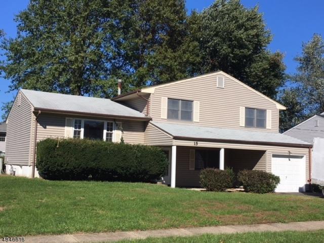 15 Graydon Pl, Mount Olive Twp., NJ 07836 (MLS #3510424) :: The Sue Adler Team
