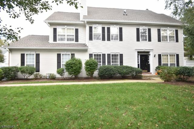 1202 S Branch Dr, Readington Twp., NJ 08889 (#3510728) :: Jason Freeby Group at Keller Williams Real Estate