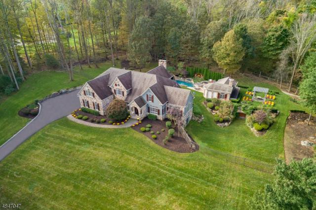 11 Old Mine Rd, Tewksbury Twp., NJ 08833 (#3510788) :: Jason Freeby Group at Keller Williams Real Estate